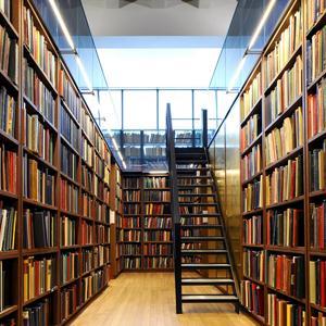 Библиотеки Раменского